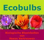 Hier zijn biologische bloembollen te verkrijgen
